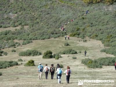 senderismo montaña, Parque Natural del Hayedo de Tejera Negra; el senderista